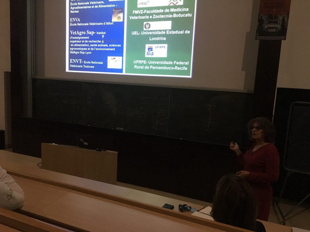 Jane Megid à la rencontre des étudiants lors de la soirée organisée par IVSA jeudi 21 novembre sur le thème de l'Amérique Latine.