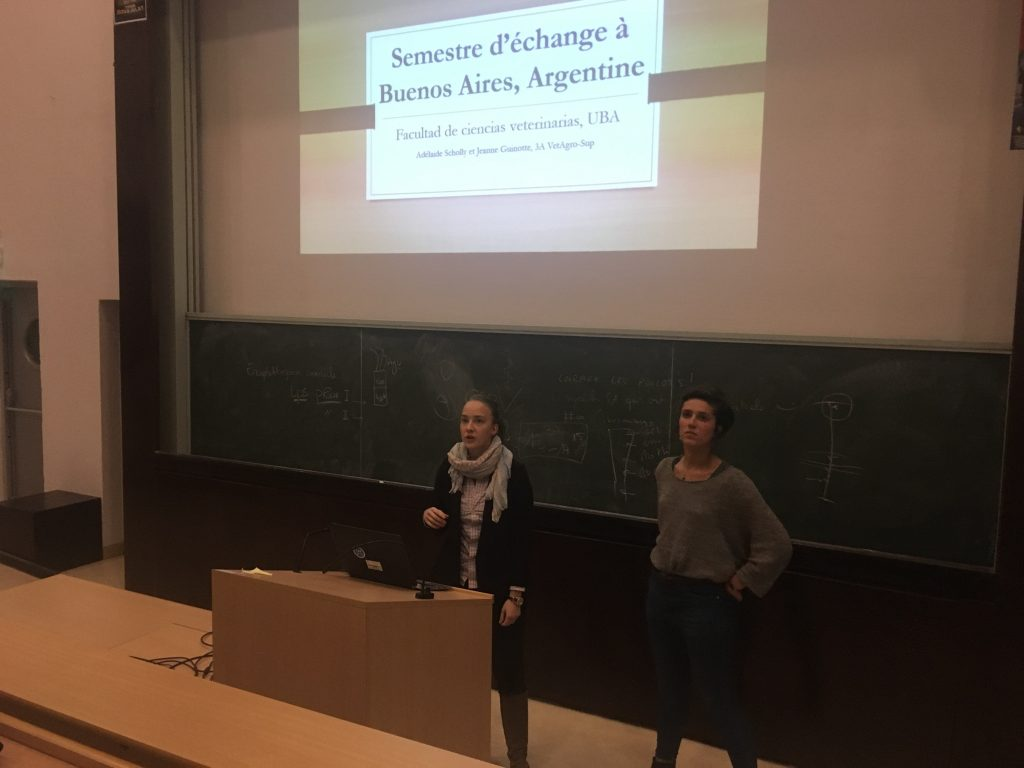 Présentation de deux étudiantes vétérinaires, Adélaïde Scholly et Jeanne Guinotte, de leur semestre en mobilité à l'Universidad de Buenos Aires, Argentin.