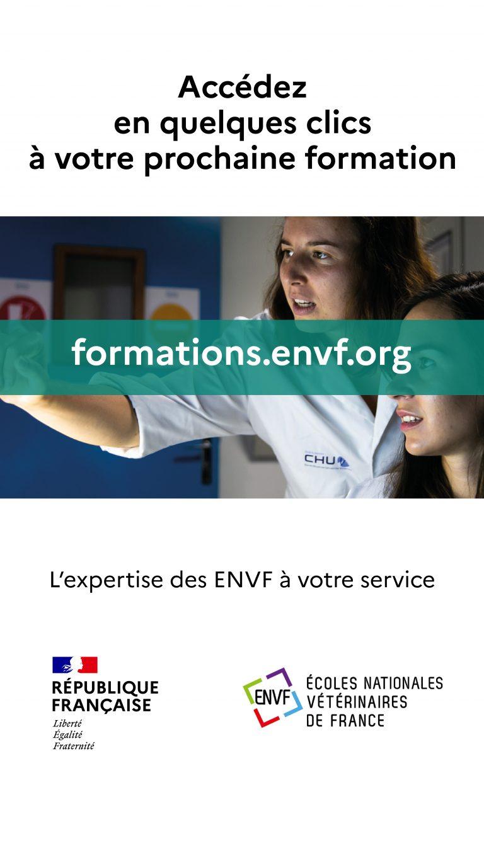 visuel_IGS_site_fc_envf4